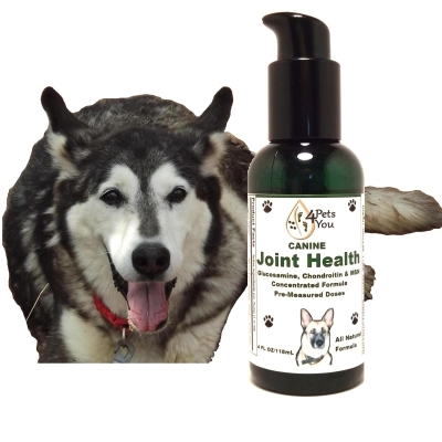 Best Joint Supplements For Dogs- Joint Health