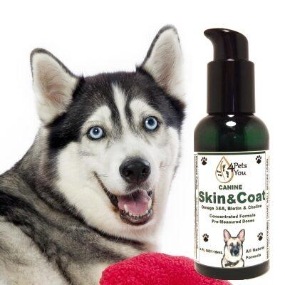 Canine Skin N Coat