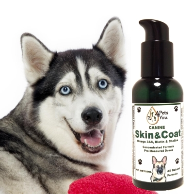 dog supplements online-skin n coat