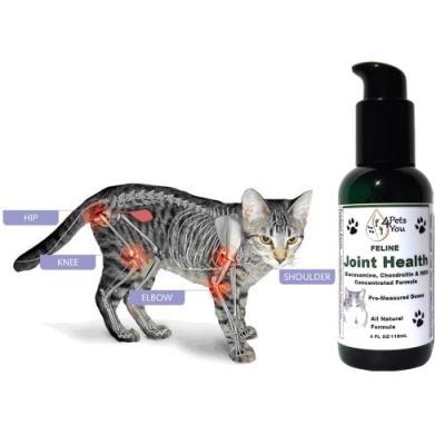 Feline Joint Health
