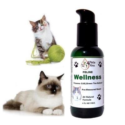 Feline Wellness