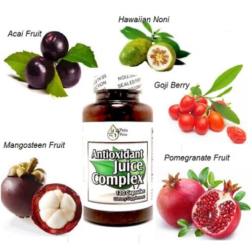 Antioxidant juice complex with fruit