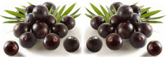 Benefits Of Acai Berry