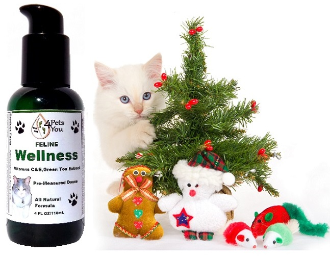 Give your pet wellness supplement for christmas